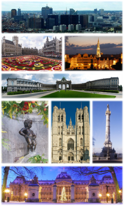 TE-Collage Brussels.png